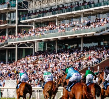 Traders Horse Racing