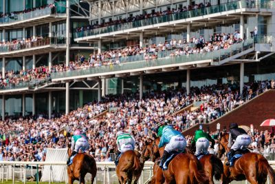 Traders Horse Racing